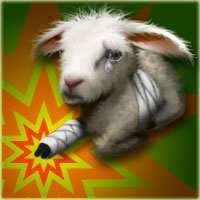 Upjers armes Schaf zu Ostern